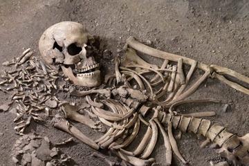 Klimaforandringer, forhistoriske dyr og stenalderjægere