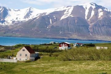 Kulturcafé Island