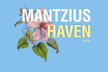 Mantzius Haven - uge 29