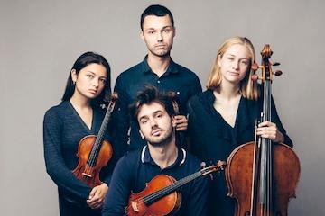 Novo Quartet - BirKam