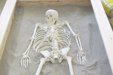 Kom og udgrav et skelet i din efterårsferie!